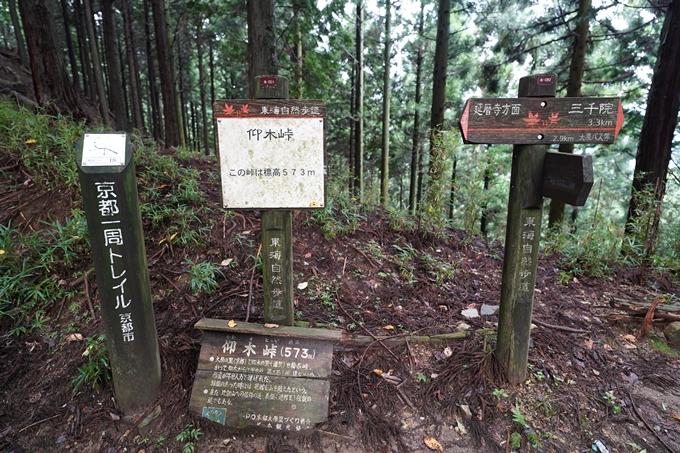 京都一周トレイル_北山編_2021 No33