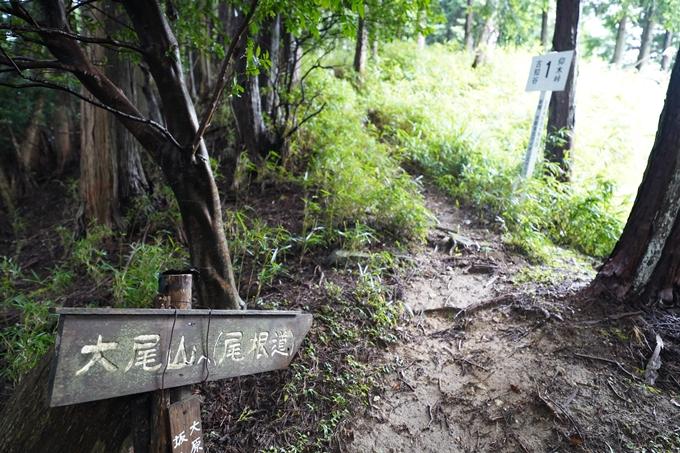 京都一周トレイル_北山編_2021 No34