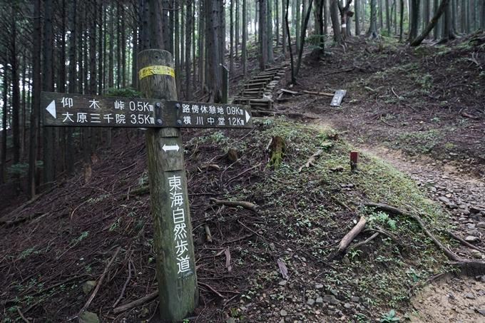 京都一周トレイル_北山編_2021 No44