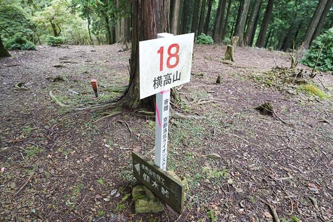 京都一周トレイル_北山編_2021 No65