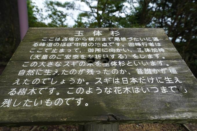京都一周トレイル_北山編_2021 No75