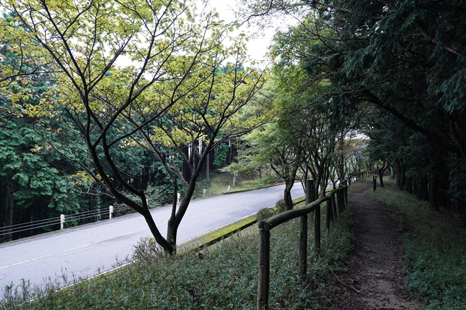 京都一周トレイル_北山編_2021 No78