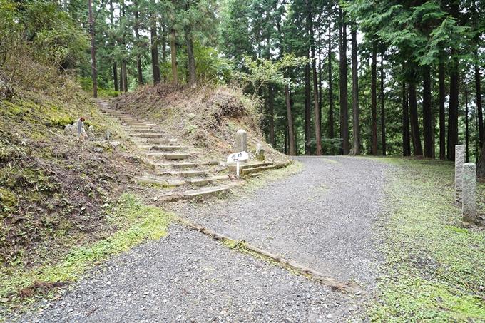 京都一周トレイル_北山編_2021 No81