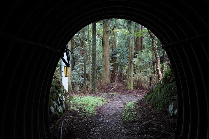 京都一周トレイル_北山編_2021 No89