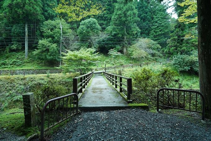 京都一周トレイル_北山編_2021 No109