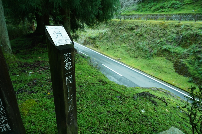 京都一周トレイル_北山編_2021 No110