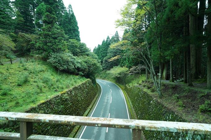 京都一周トレイル_北山編_2021 No113