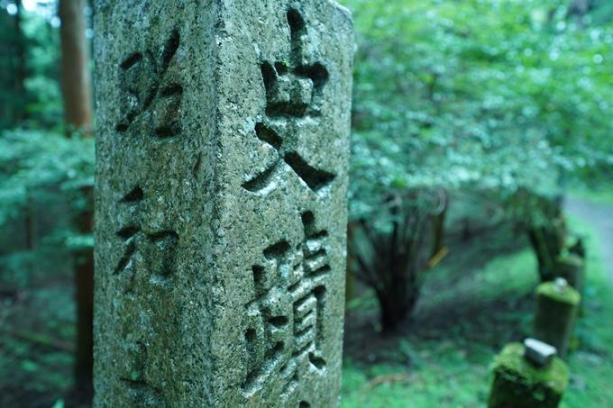 京都一周トレイル_北山編_2021 No118