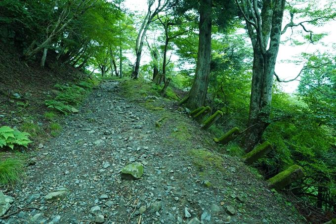 京都一周トレイル_東山編_2021 No3