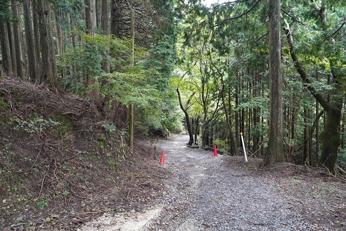 京都一周トレイル_東山編_2021 No17