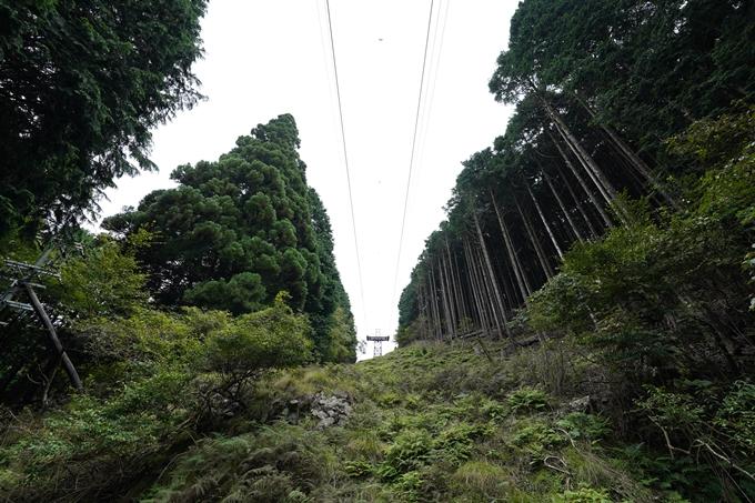 京都一周トレイル_東山編_2021 No18
