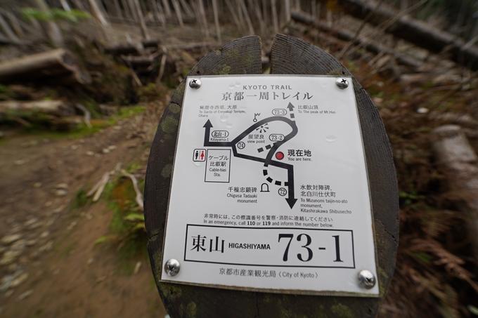 京都一周トレイル_東山編_2021 No31