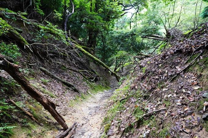 京都一周トレイル_東山編_2021 No35
