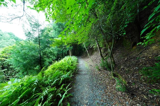 京都一周トレイル_東山編_2021 No67