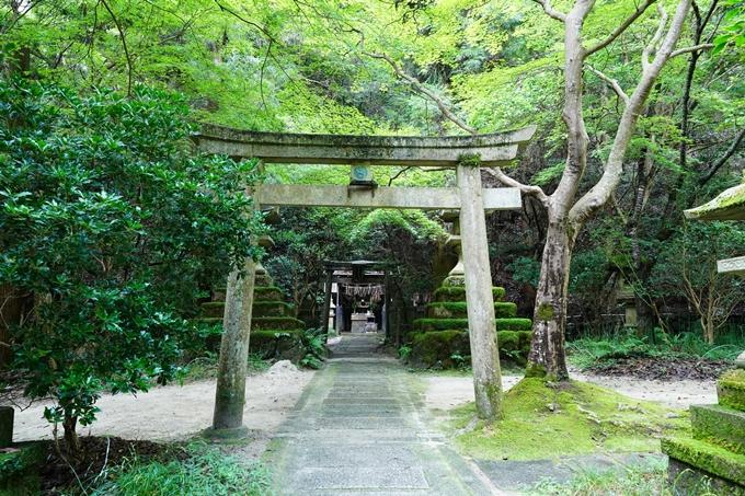京都一周トレイル_東山編_2021 No100