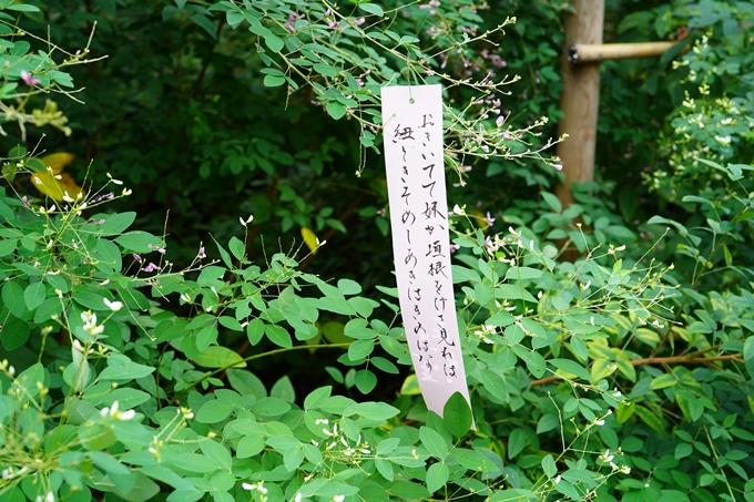 梨木神社_萩_2021 No5
