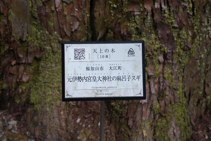 元伊勢_皇大神社 No16