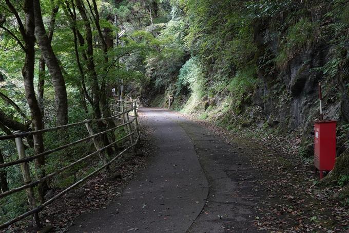 元伊勢_天岩戸神社 No18