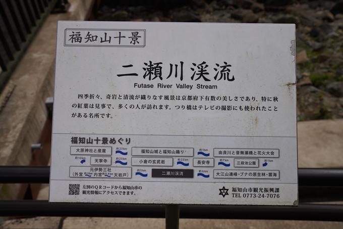 二瀬川渓流_新童子橋 No4