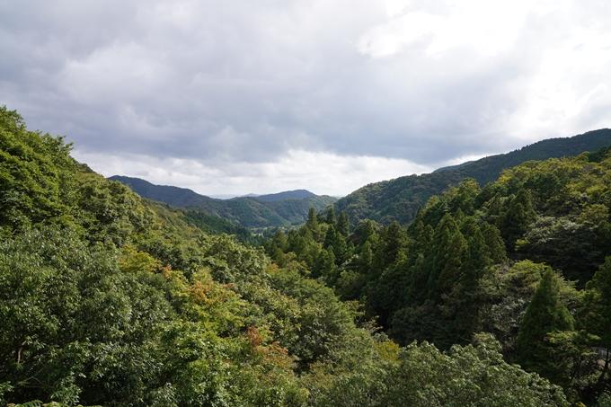 二瀬川渓流_新童子橋 No14