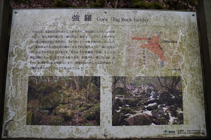 二瀬川渓流_新童子橋 No22