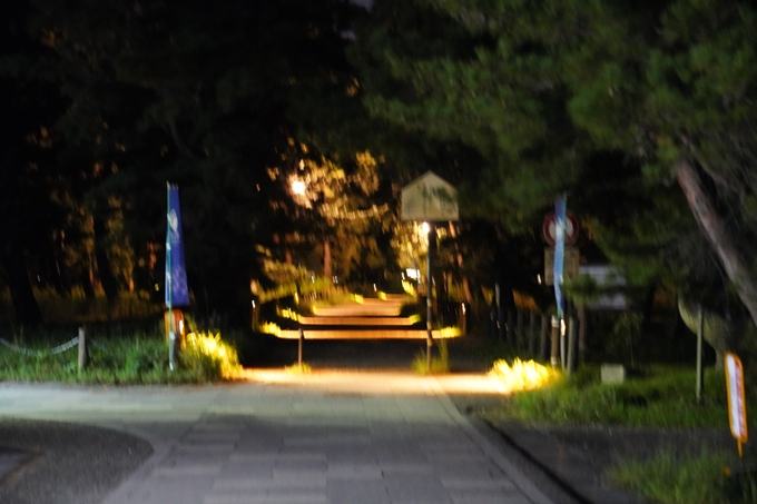光のアトリエ_2021_天橋立砂浜ライトアップ No4