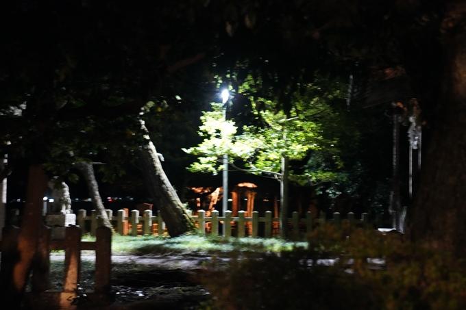 光のアトリエ_2021_天橋立砂浜ライトアップ No10