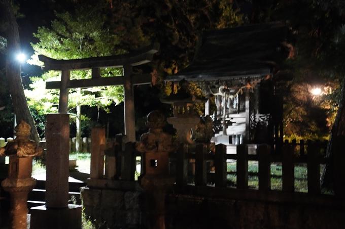光のアトリエ_2021_天橋立砂浜ライトアップ No11