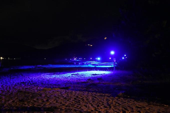 光のアトリエ_2021_天橋立砂浜ライトアップ No16