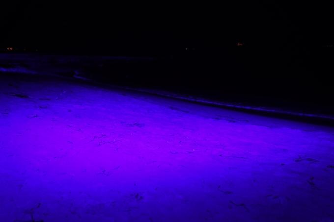光のアトリエ_2021_天橋立砂浜ライトアップ No26