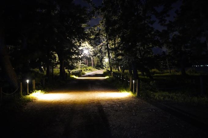 光のアトリエ_2021_天橋立砂浜ライトアップ No35